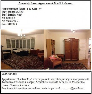 article-home-staging-annonce1